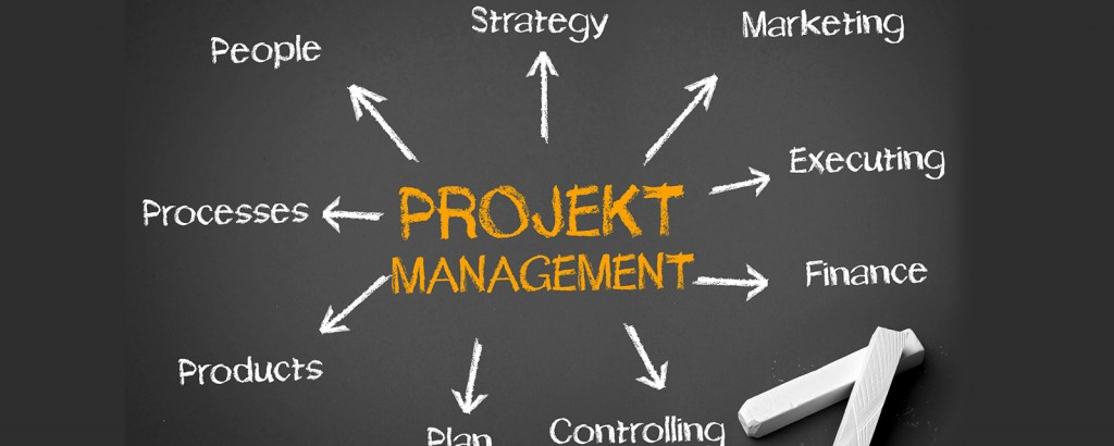 Projektmanagement kompakt mit Project Simulation und agilem Projektmanagement