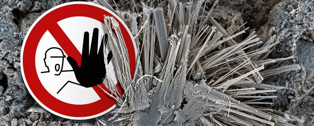 Praxistag zum Forum Asbest